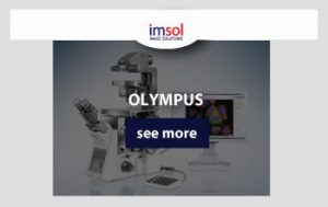 Olympus_MAIN-IMAGE_product
